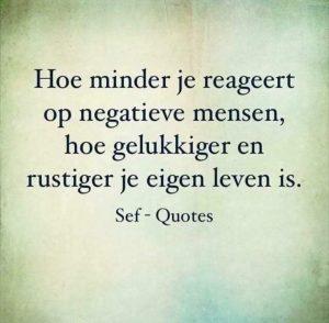 Algida quotes Hoe minder je reageert op negatieve mensen hoe rustiger je eigen leven wordt
