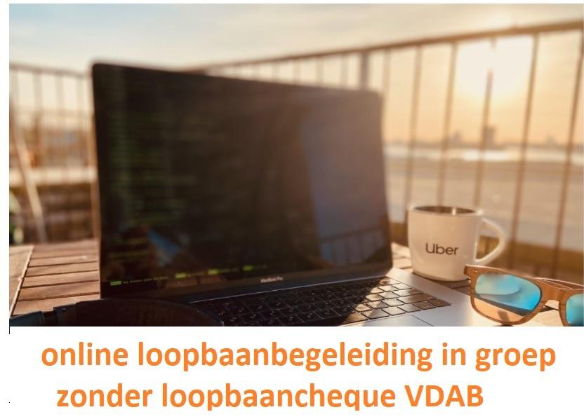 Online loopbaanbegeleiding in groep zonder loopbaancheque VDAB
