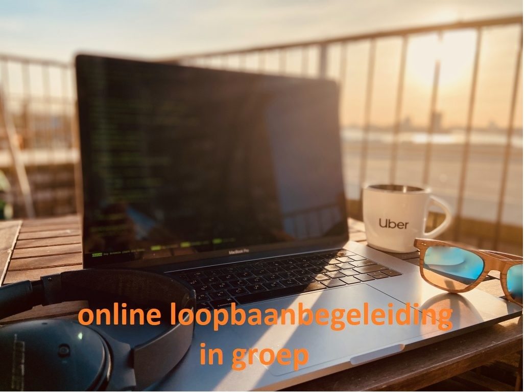 online loopbaanbegeleiding in groep